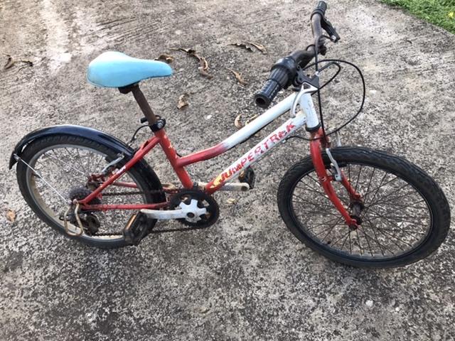 Vélo enfant 20 pouces